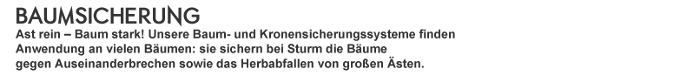 Baumsicherung Text